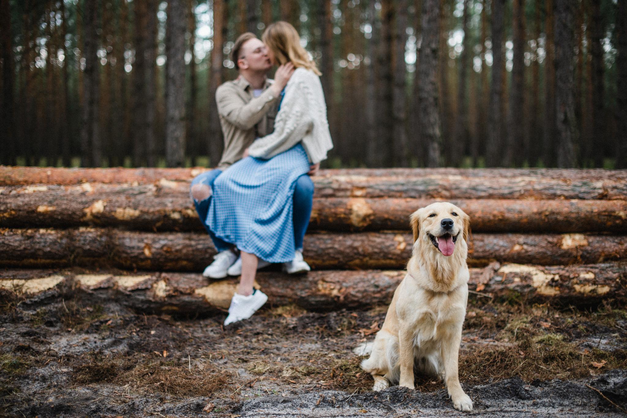 Sesja narzeczeńska z psem